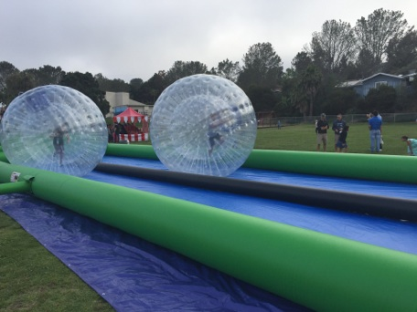 Zorbs racing down track